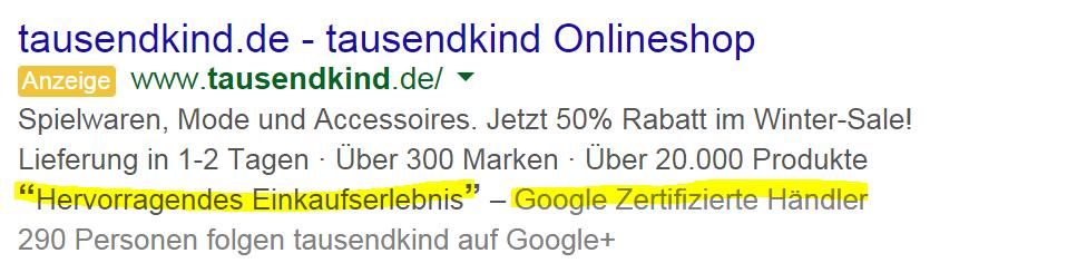 Google Zertifizierte Händler_in AdWords_Anzeigen